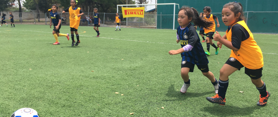 [THE INTER CAMPUS' NATIONAL FEMALE TOURNAMENT IN MEXICO]