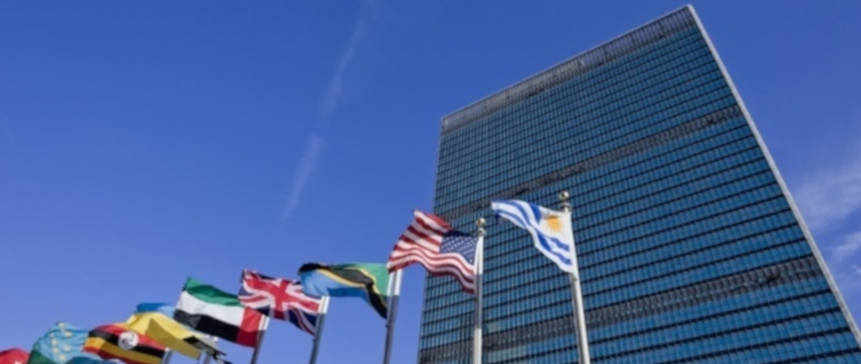 [INTER CAMPUS AND THE UN: COMMON OBJECTIVES]